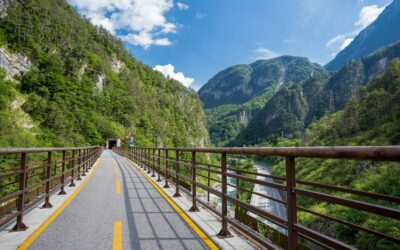 """""""Die Welt"""" - enthusiastic about the Alps-Adriatic cycle path"""